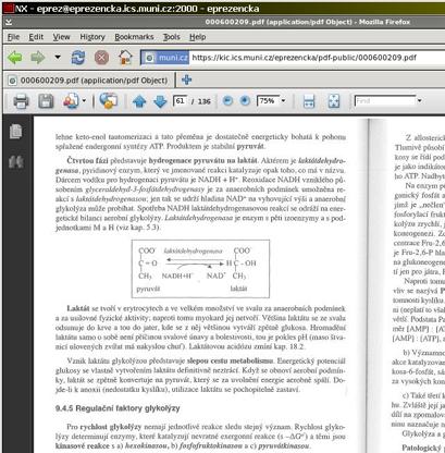 Zobrazené PDF